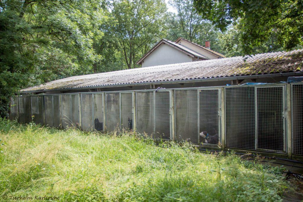 alte Hundequarantänestation