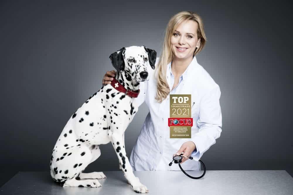 Tierarzt Karlsruhe
