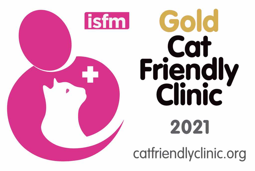 Gold Standard Cat friendly clinic